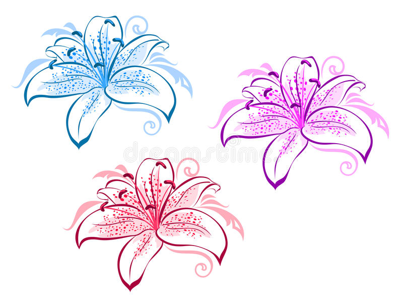 Lilienblumen lizenzfreie abbildung