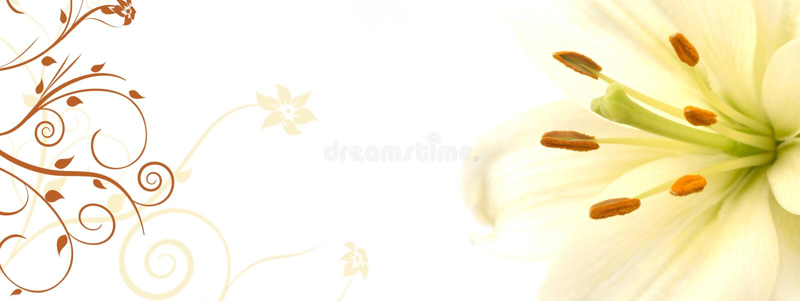 Lilienfahne stock abbildung