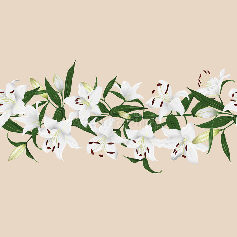 Lilies almond horizontal seamless vector banner. EPS10 file stock illustration