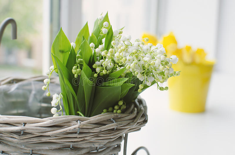 Lilies of the valley bouquet stock photography