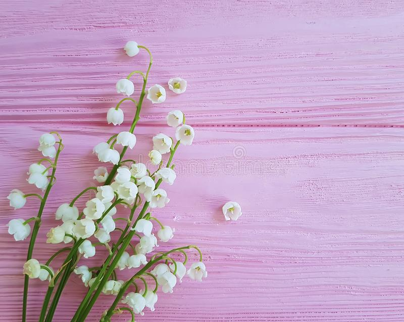 Lilies of the valley on pink wooden may arrangement romance spring flowers fragrant royalty free stock photography