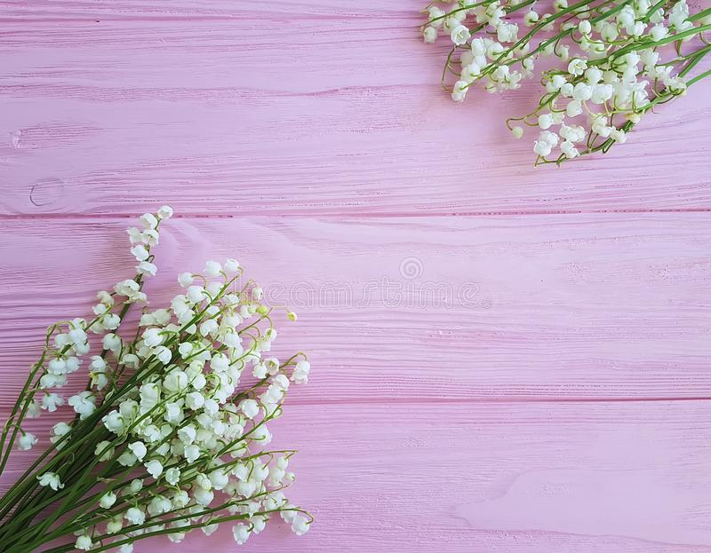 lilies of the valley on pink wooden spring flowers royalty free stock image