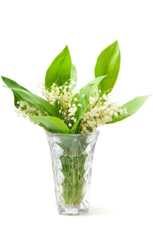 Download Lilies On The Vase Royalty Free Stock Images - Image: 15482839