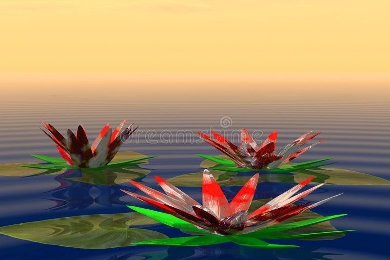 Lilies in water royalty free illustration