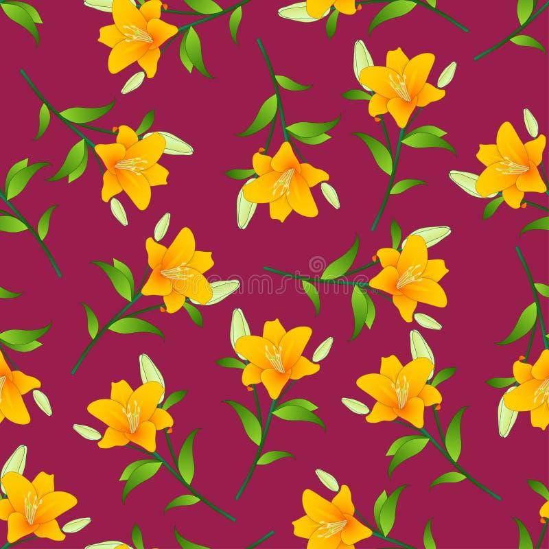 Lilium candidum, the Madonna lily or Orange Lily on Violet Red Background. Vector Illustration.  royalty free illustration