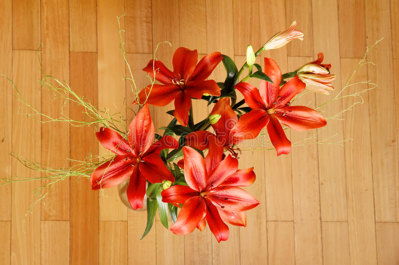 Lilium Flower. A Bouquet of blooming Lilium Flowers royalty free stock photos