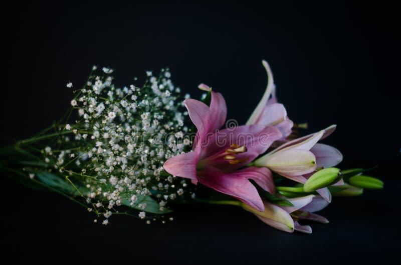 lilja arkivfoton
