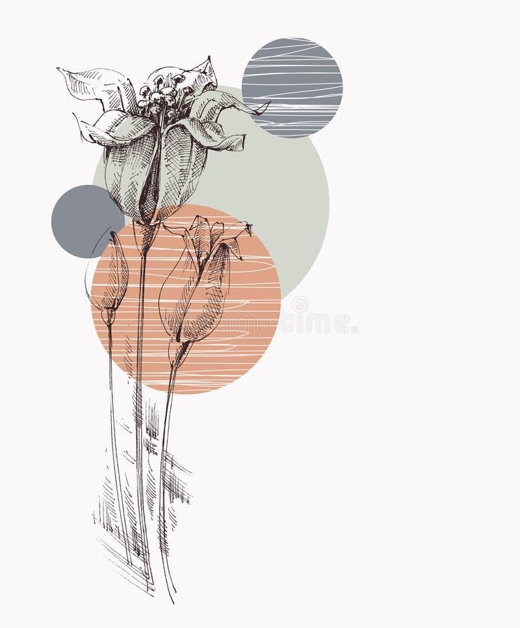 Liljablommor räcker det utdragna hälsa kortet stock illustrationer