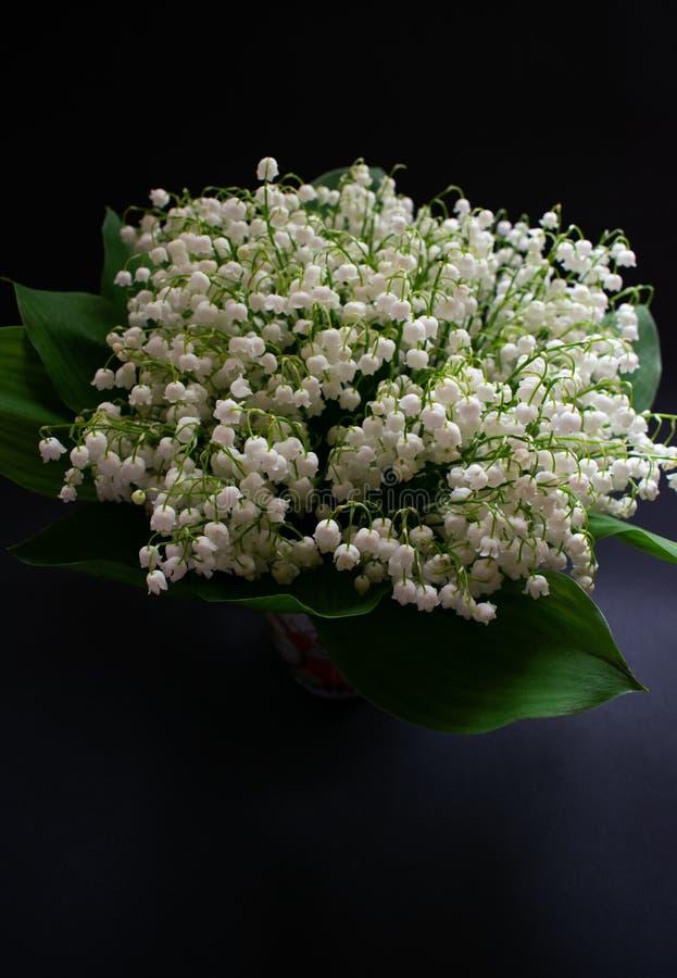 Liljekonvaljblommor p? en svart bakgrund 2 arkivfoto