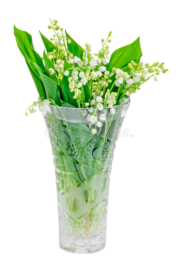 Liljekonvaljen liljekonvaljen, Convallariamajalisbukett blommar i en genomskinlig vas, isolerad vit bakgrund arkivbilder