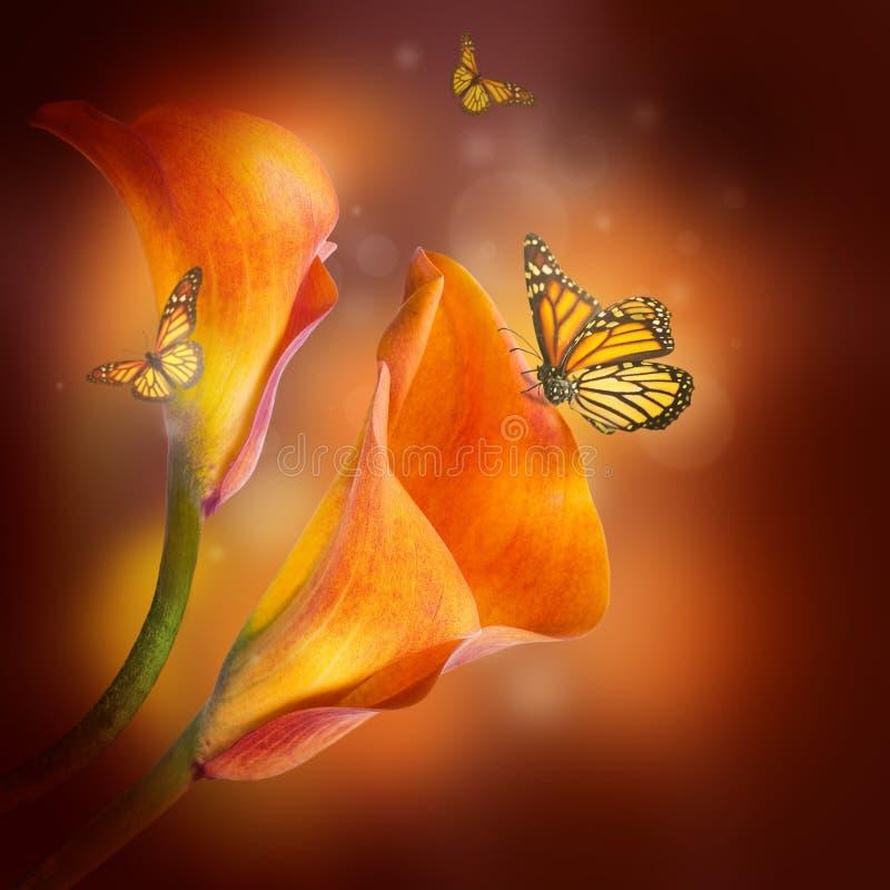 Liljor och fjärilen på en mörk bakgrund royaltyfri fotografi