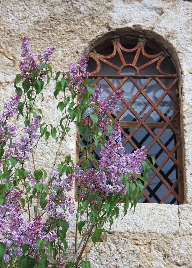 Lillà dalla vecchia finestra turca della Camera fotografia stock