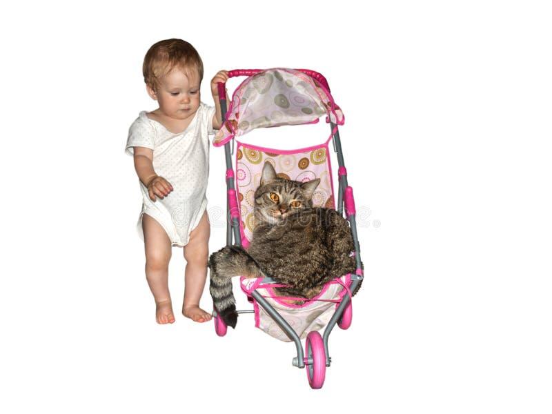 Lilla barnet rullar hans stora katt i ett litet behandla som ett barn leksaksittvagnen fotografering för bildbyråer