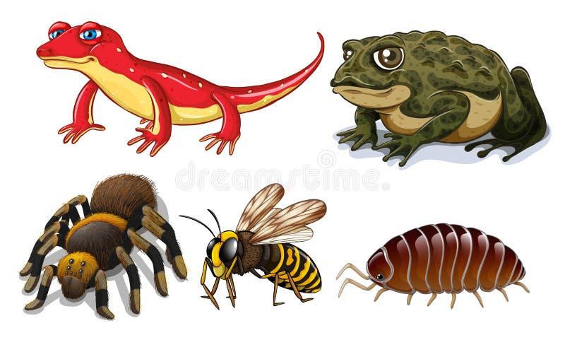 lilla djur stock illustrationer