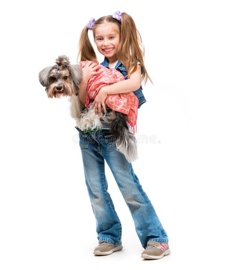 Lilla flickan är med hennes hund Yorkshire Terrier royaltyfri fotografi