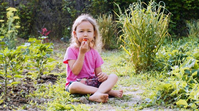 Lilla flickan äter jordgubben och ser kameran som sitter på gräset arkivfoto