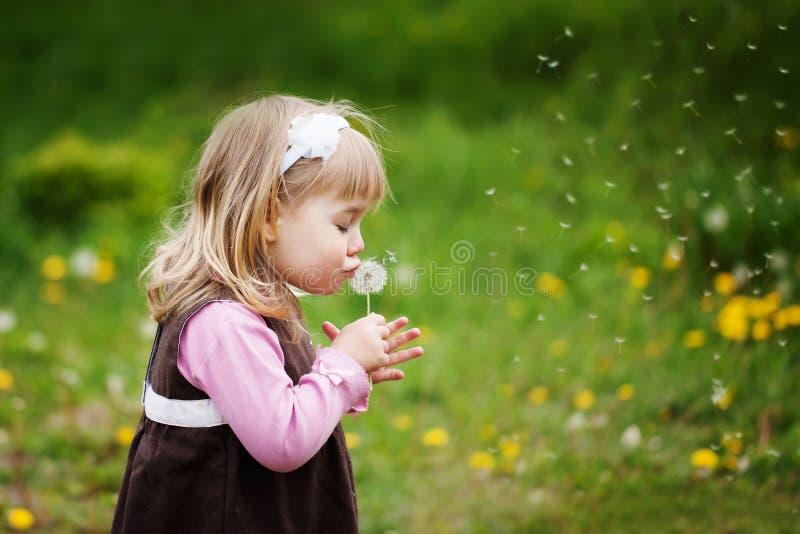 Lilla flickan blåser en maskros royaltyfria bilder