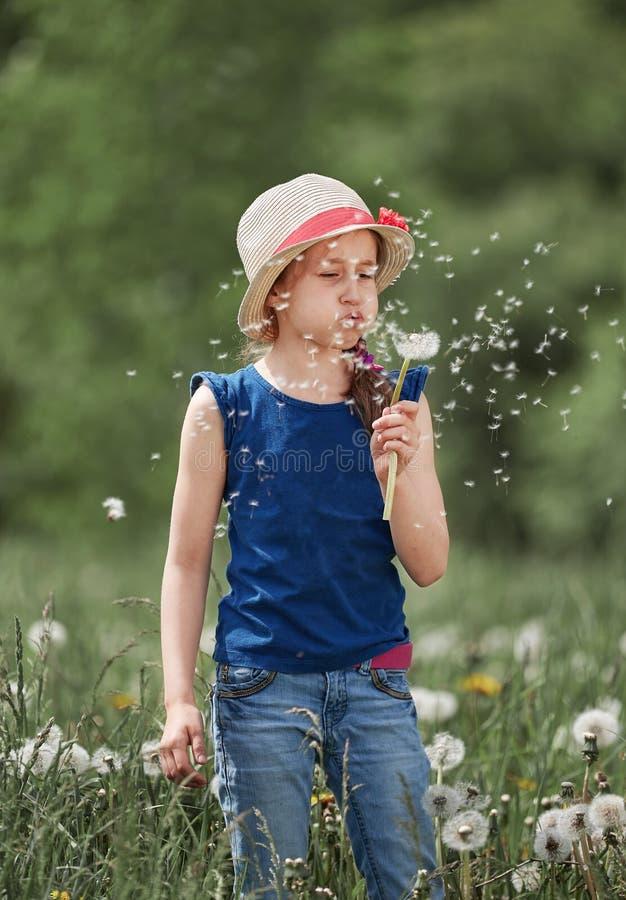 Lilla flickan blåser på en maskros som står på en grön äng royaltyfri foto