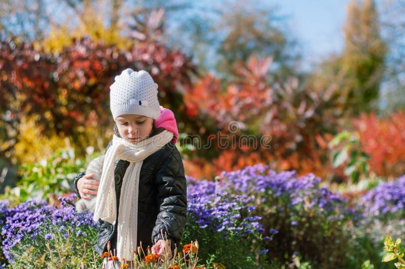 Lilla flickan går i den färgrika trädgården för hösten fotografering för bildbyråer