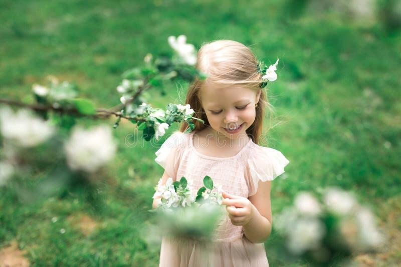 Lilla flickan går i en äppleträdgård fotografering för bildbyråer