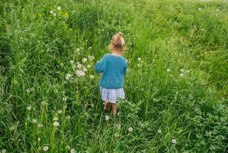 Lilla flickan går i gräs på ängen tillbaka sikt royaltyfria bilder