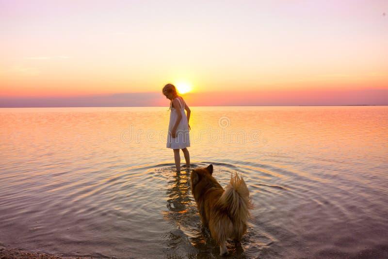 Lilla flickan går med en hund vid havet arkivbilder