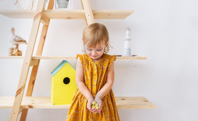 Lilla flickan i en härlig klänning som rymmer små vaktelägg i den vita barnkammaren, hyr rum arkivfoto