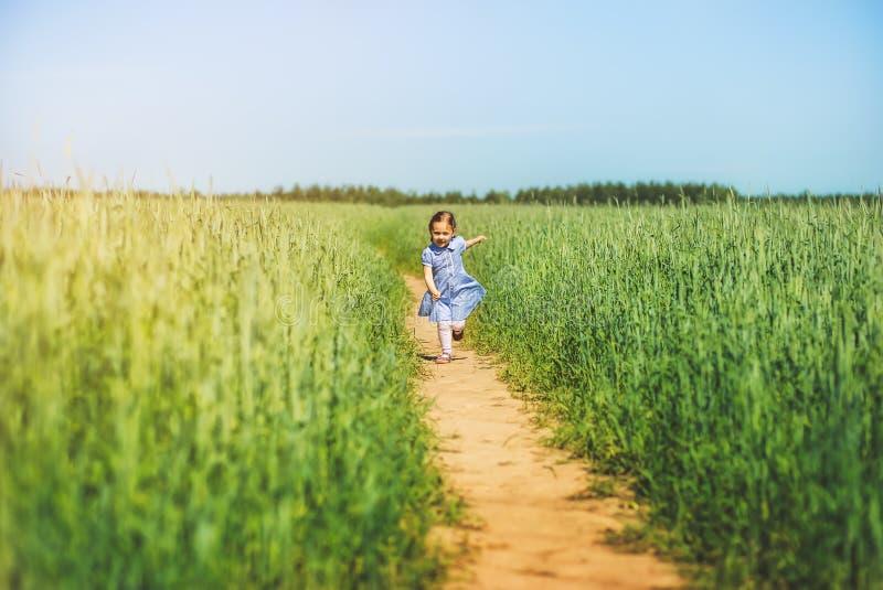 Lilla flickan i en klänning stöter ihop med fältet på en solig dag royaltyfri foto