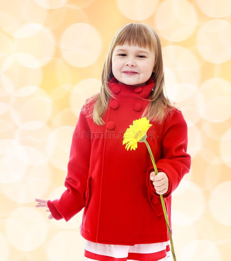 Lilla flickan i ett rött lag och innehav blommar royaltyfria bilder