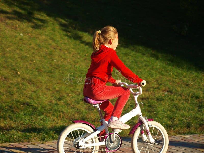 Lilla flickan i röd kläder som rider hennes cykel i en stad, parkerar royaltyfri fotografi