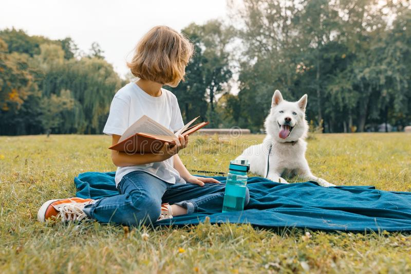 Lilla flickan med den vita hunden som är skrovlig i, parkerar sitter på gräset, lekar, läser och att vila royaltyfri fotografi