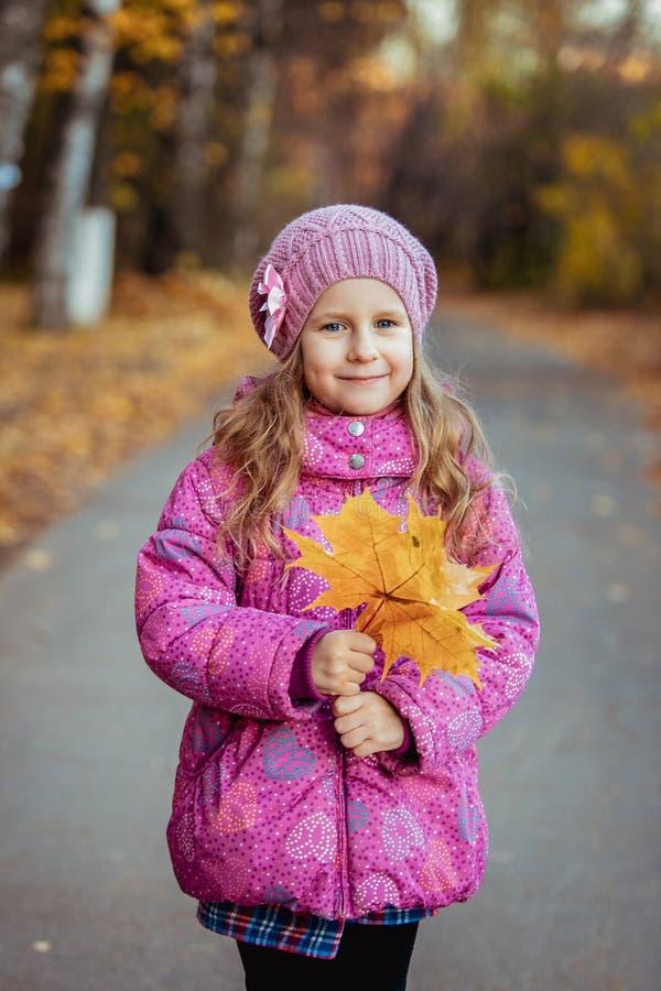 Lilla flickan på går på en solig höstdag som rymmer orange lönnlöv i hennes händer och le utomhus- fotografering för bildbyråer