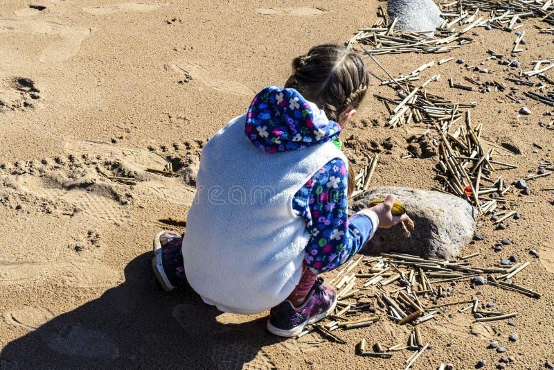 Lilla flickan p? en ?de strand sitter och samlar stenar och skal mot den bl?a himlen och de h?rliga v?gorna av havet fotografering för bildbyråer