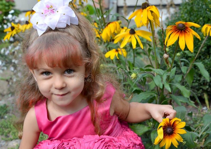 Lilla flickan rymmer en coneflowerblomma i hand Stående arkivfoto