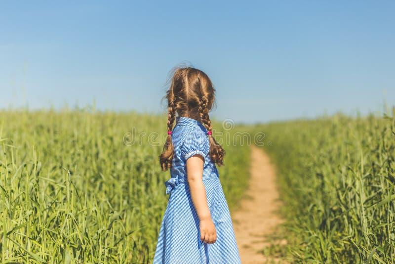 Lilla flickan ser horisonten i fältet arkivfoto