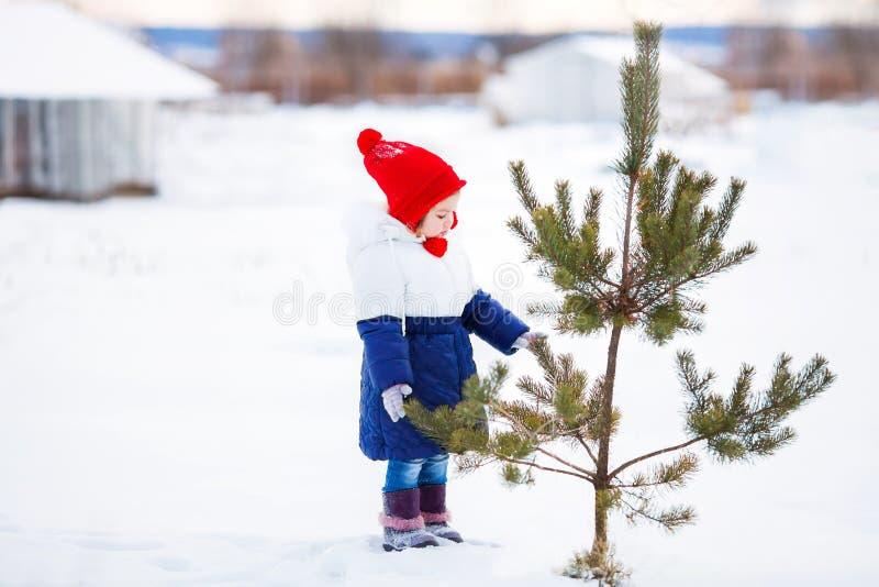 Lilla flickan som utomhus går, övervintrar snöig dag royaltyfri fotografi