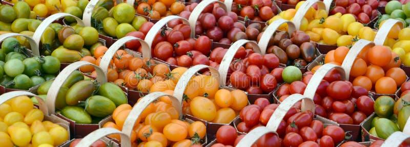 Lilla tomater arkivfoton