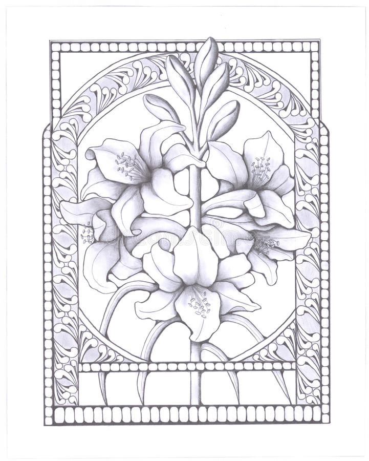 Lillies_and_buds stock illustrationer