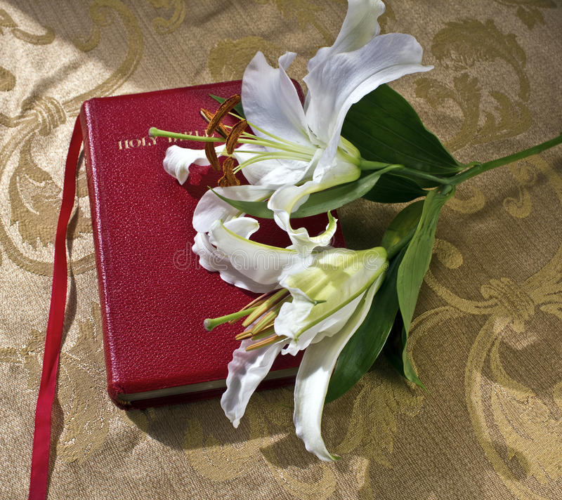 Lillies on a red Bible on gold. Brocade cloth royalty free stock photography