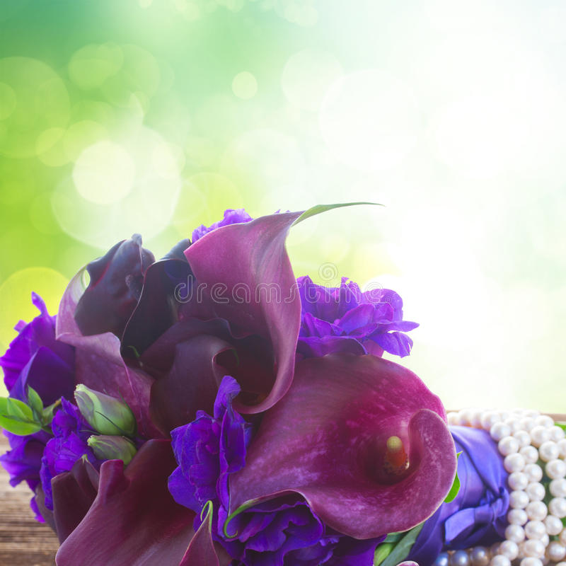 lilly水芋属和南北美洲香草花 免版税图库摄影