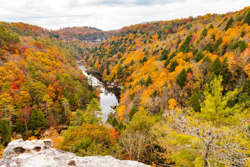 Lilly Bluff Overlook a Obed immagine stock