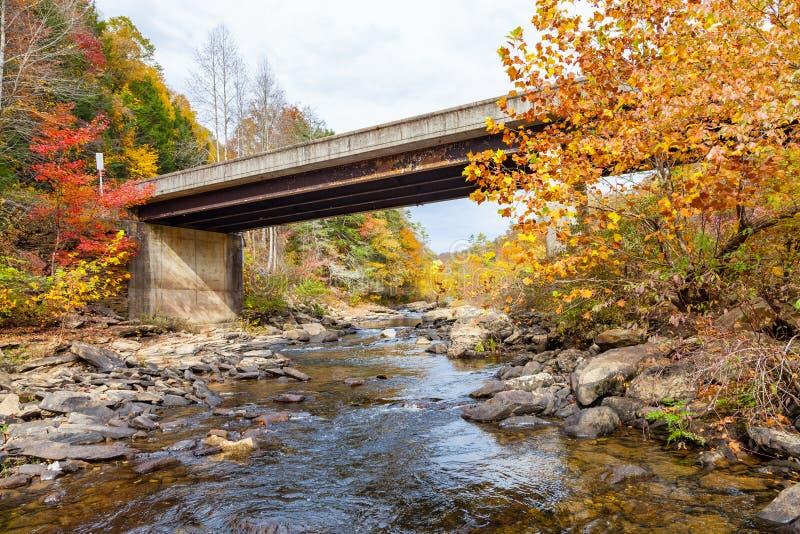 Lilly Bridge al fiume selvaggio e scenico di Obed immagini stock