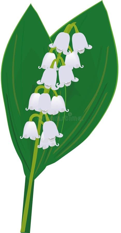 lilly dal stock illustrationer