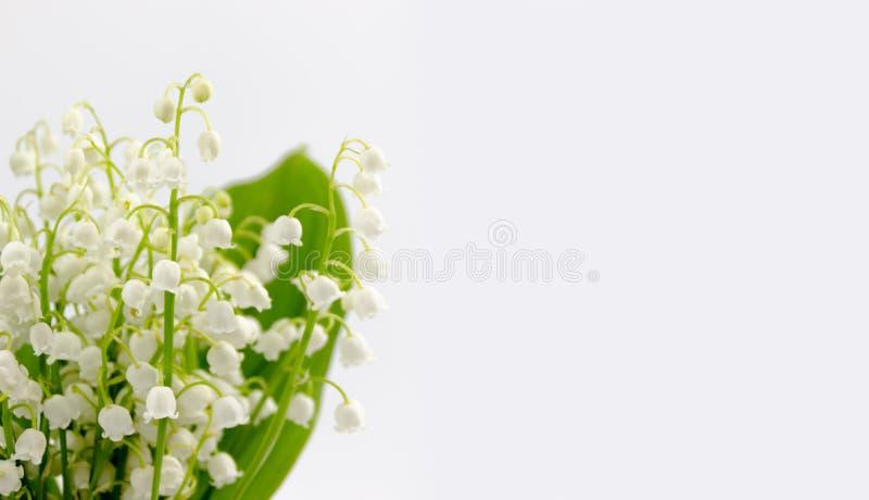 Lilly del ramo de las flores y de las hojas del valle aislado en el fondo blanco foto de archivo