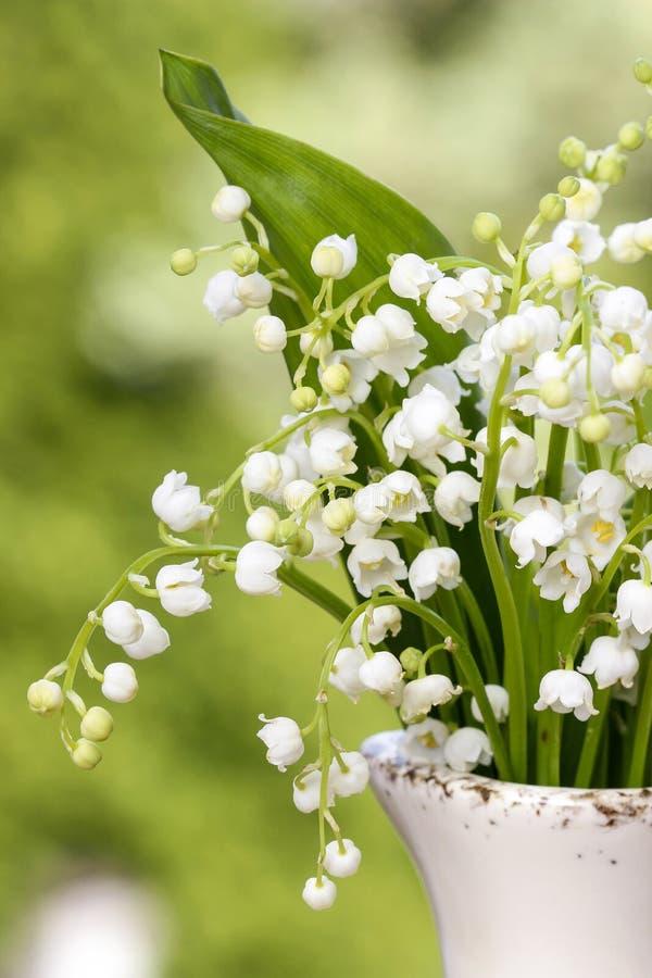 Lilly dolina kwitnie w białej nieociosanej wazie zdjęcia stock