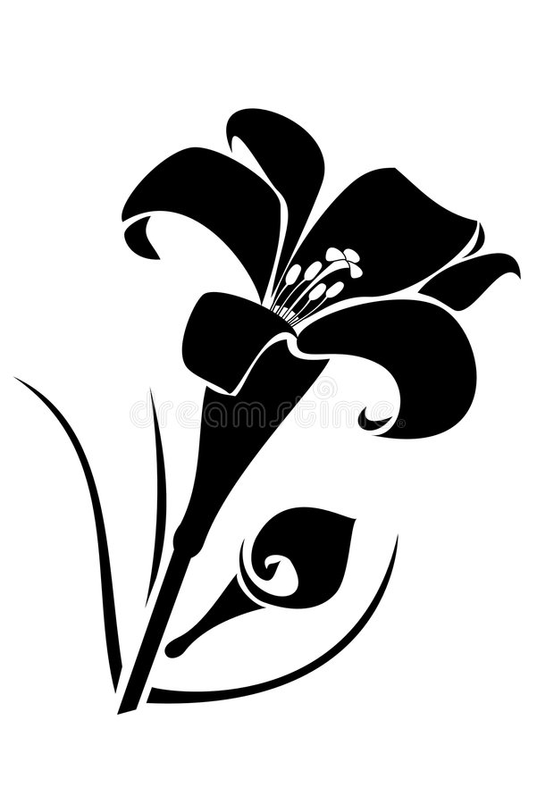 Download Lilly Flower Stock Photo - Image: 8356630
