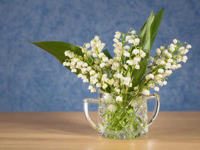 Download Lilly of the Valley stock image. Image of head, dairy - 22422353