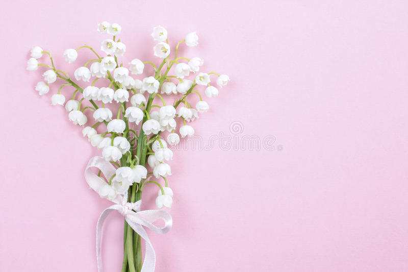 Download Lilly Of The Valley Flowers On Bright Pink Background. Stock Photo - Image: 43502751