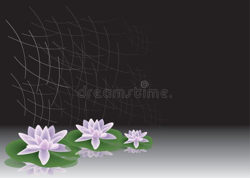 lilly woda royalty ilustracja