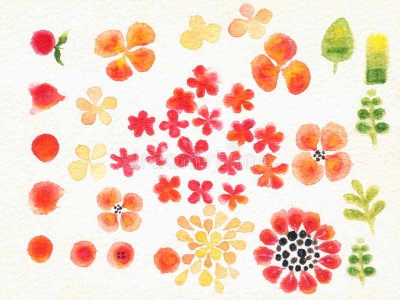 Lilttle flowers sketch by water colour on white background. Card vector illustration
